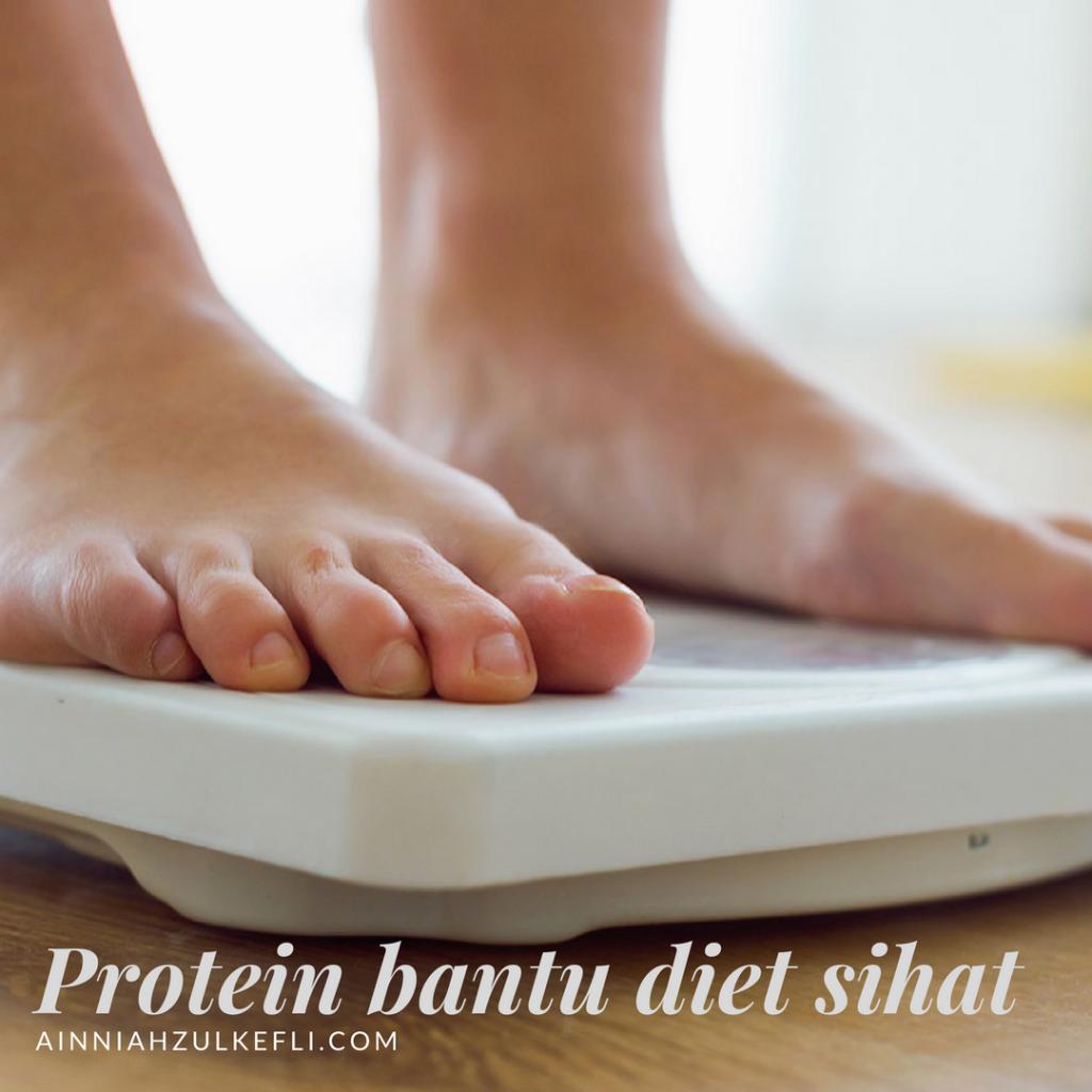 fungsi protein dalam badan