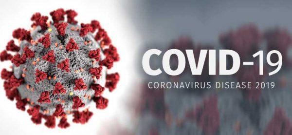 apa itu virus corona covid19